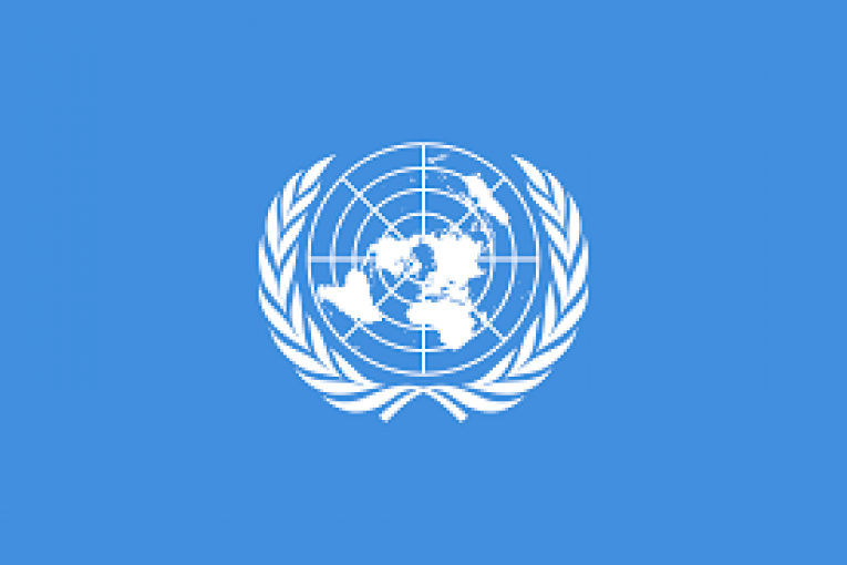 United Nations: In response to Unprecedented Recognition of Israel's Apartheid Regime, States Must Take Concrete Steps to End this unjust reality